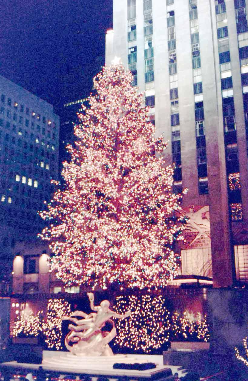 Árvore de Natal que não pinta na tela da Globo