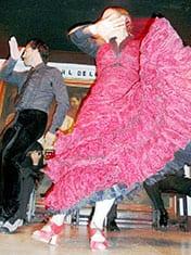 flamenco flamenco.jpg