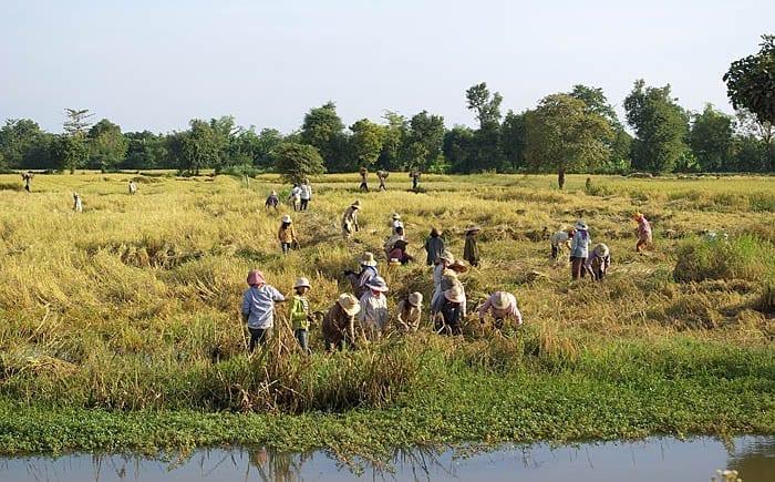 200 pessoas portadoras do vírus da AIDS em uma pequena comunidade de Cambodja