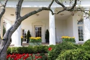 whitehouse1 300x200 whitehouse1