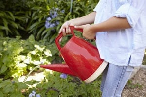 wateringplants 300x200 Young girl with watering can
