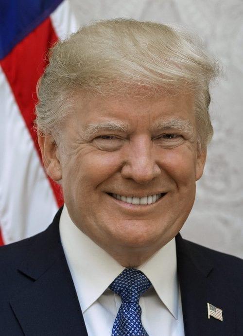Bye, Bye Donald