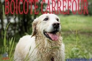 boycottcareffour1 300x200 Paulistas torturam e matam animais