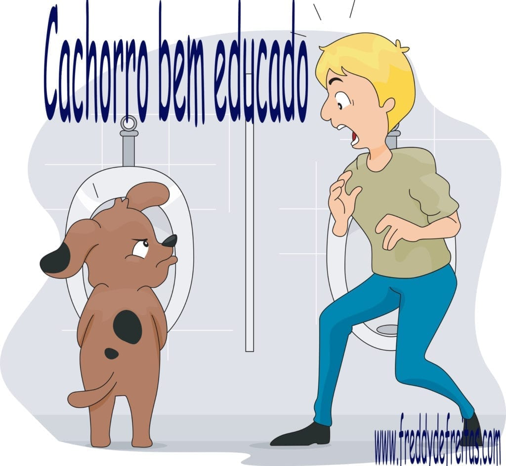 cachoorobemeducado 1024x942 Cachorro bem educado