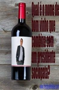 winebolsonaro 196x300 Red Wine Bottle on weathered wood