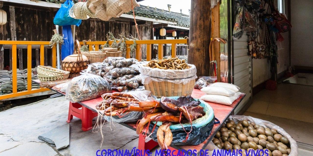 Coronavírus: mercados de animais vivos e comércio de vida selvagem continuam na Ásia em meio a crescentes pedidos de repressão