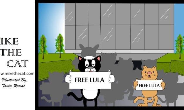 Mike The Cat® protesta nos Estados Unidos