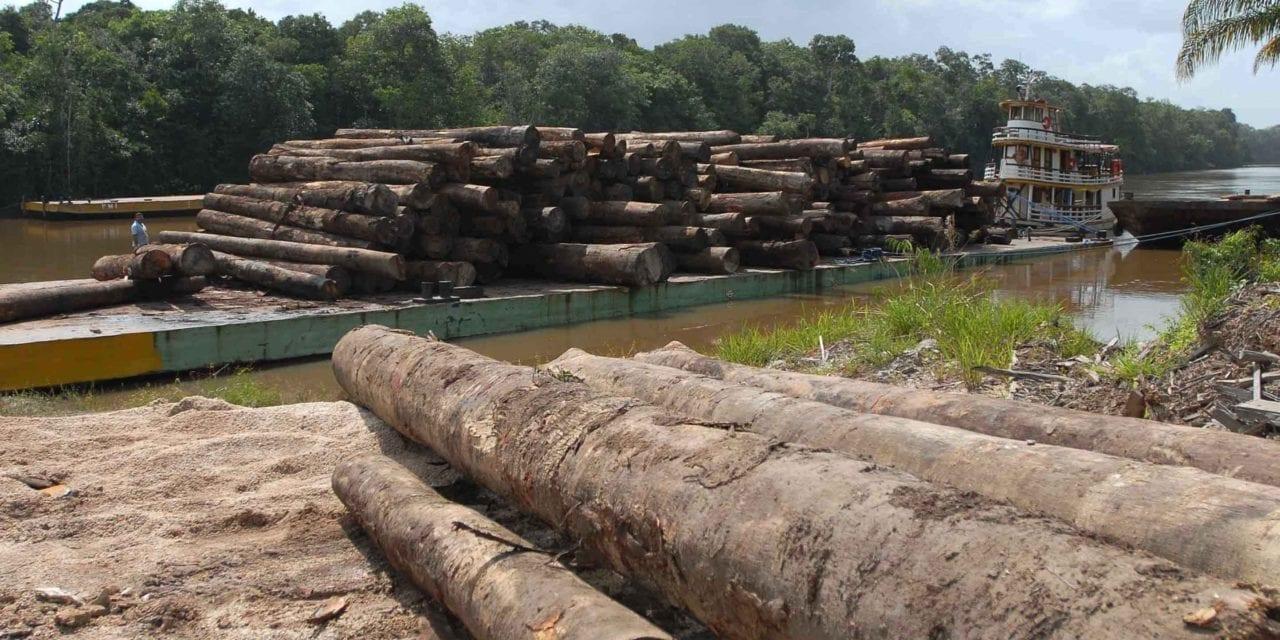 Destruição da Amazônia
